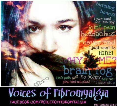 voices of fibro